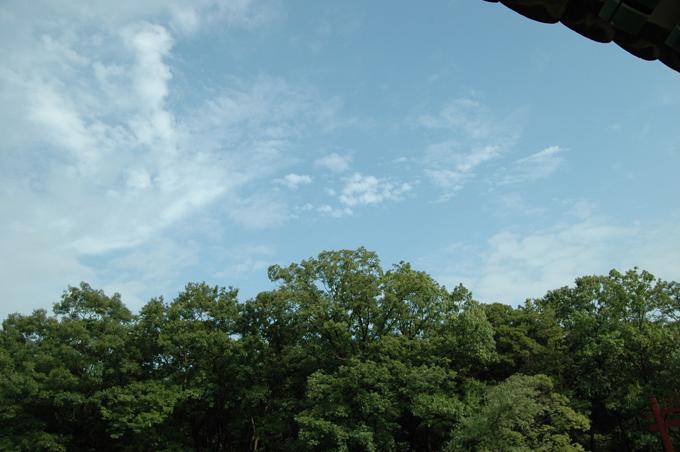 하늘이 참 맑죠? 사실 습해서 오 몸이 땀에 젖었다는...