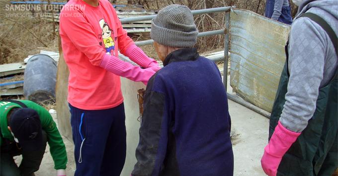 개집 이동 보수중인 할머니의 뒷모습