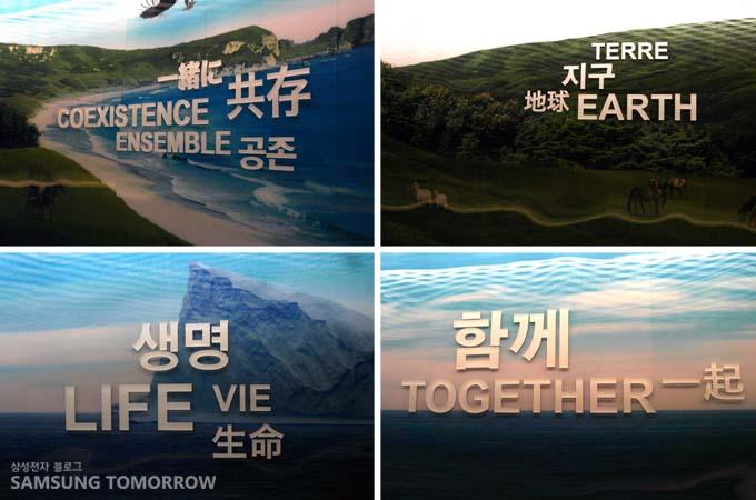 삼성관 벽면 공존,지구, 생명, 함께라는 키워드가 자리한 모습