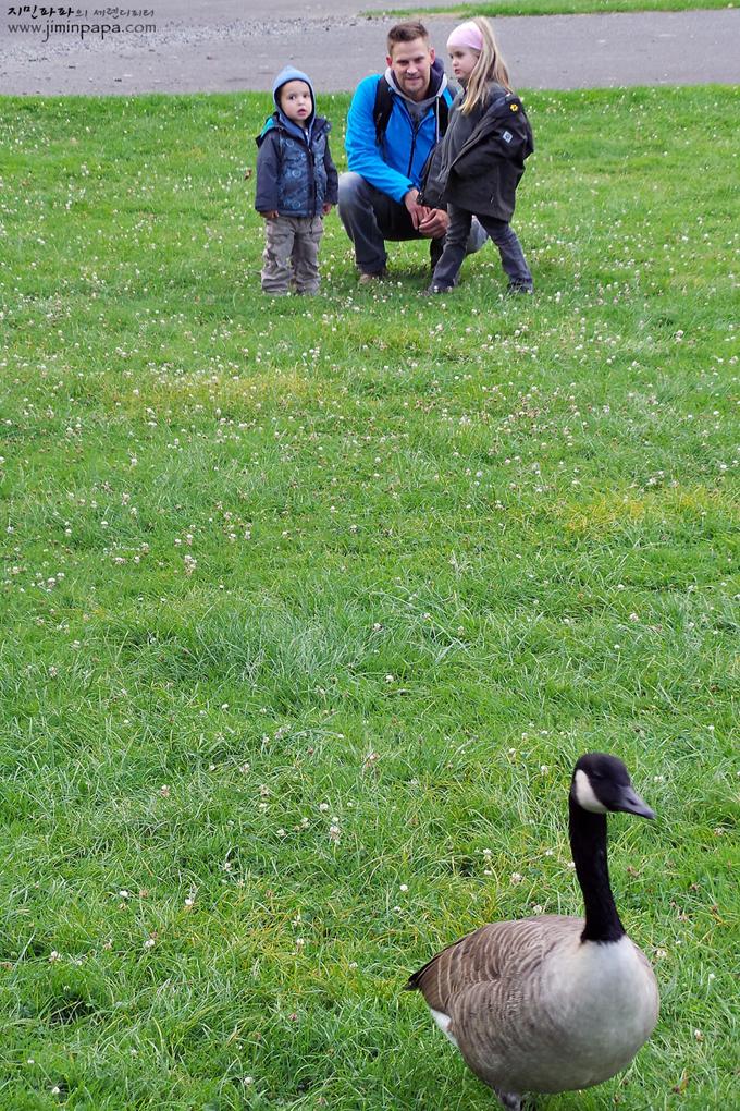 천연 녹색모드로 찍은 잔디 위의 아빠와 아이들