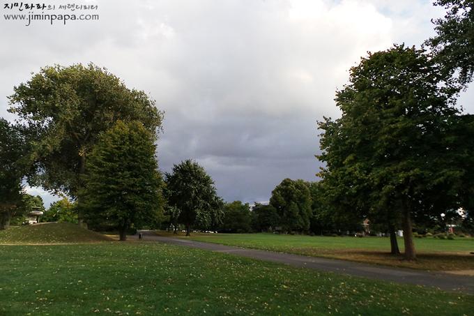 천연 녹색모드로 찍은 공원의 나무들