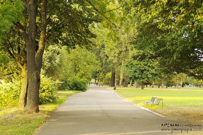 천연 녹색모드로 찍은 공원의 길