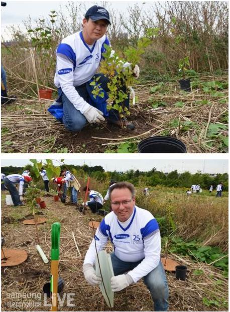 나무를 심고 있는 직원들의 모습