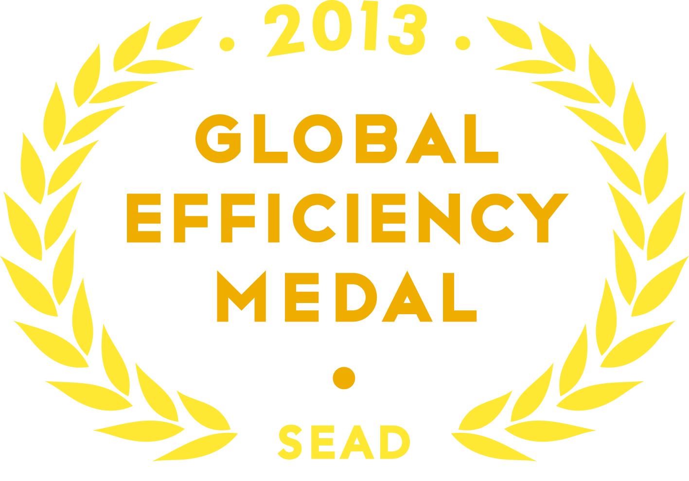 2013 Global Efficiency Medal