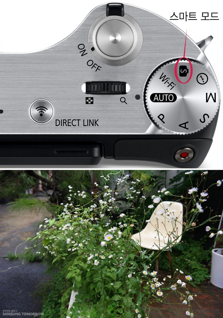 삼성스마트카메라 NX300의 스마트 모드입니다. 그것으로 찍은 사진입니다. 초점을 맞춰서 찍은 정원입니다.
