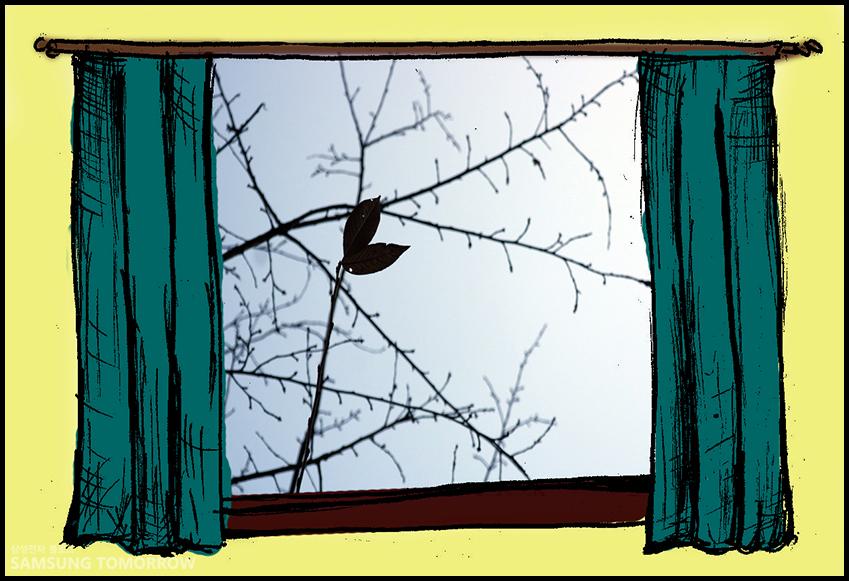 진짜 잎새가 아닌 삼성 UHD TV 속의 잎새 영상이었습니다!!