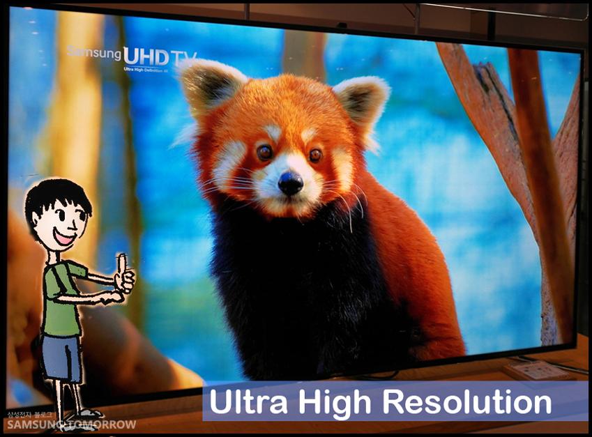 """삼성 UHD TV 속에 동물이 있는 모습입니다. """"Ultra High Resolution"""""""
