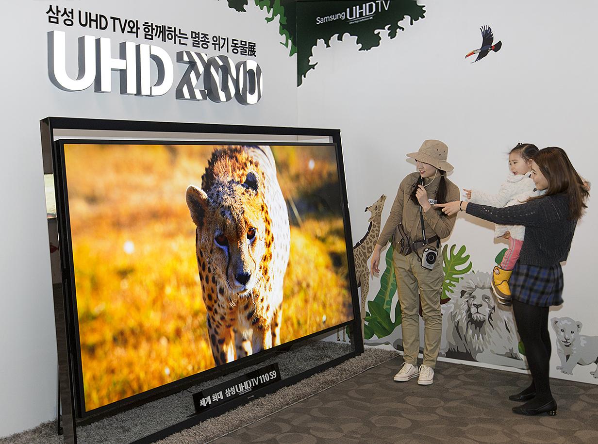 '삼성 UHD TV와 함께 하는 멸종위기동물展'을 방문한 관람객이 세계 최대 110형 UHD TV 화면을 통해 동물을 살펴보고 있다.