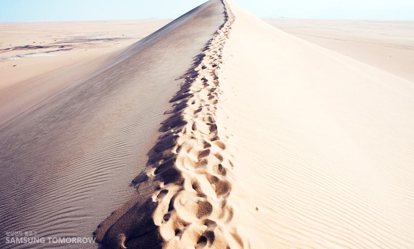 모래가 끝없이 이어진 사막의 모습입니다.