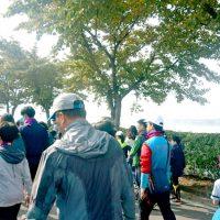 나눔, 산책처럼 가볍게! 구미 '삼성 나눔워킹 페스티벌' 참가해보니