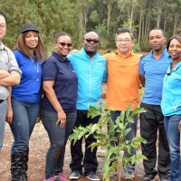 케냐 시민들과 함께 울창한 숲을 만들어갑니다