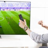비교분석, 2017 FIFA U-20 월드컵을 보다! QLED TV로 볼까? 경기장 직관 갈까?