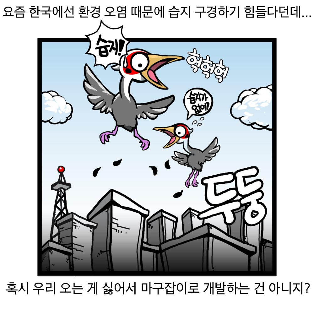 요즘 한국에선 환경 오염 때문에 습지 구경하기 힘들다던데... 혹시 우리 오는 게 싫어서 마구잡이로 개발하는 건 아니지? 두둥 습지! 습지가 없어! 헉헉헉