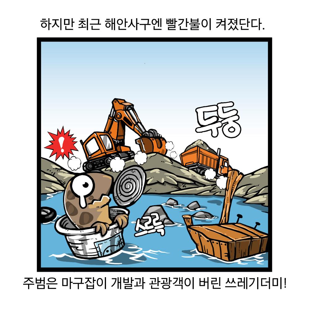 하지만 최근 해안사구엔 빨간 불이 켜졌단다. 주범은 마구잡이 개발과 관광객이 버린 쓰레기더미