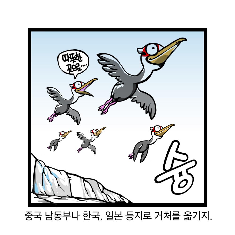 중국 남동부나 한국, 일본 등지로 거처를 옮기지. 따뜻한 곳으로 슝