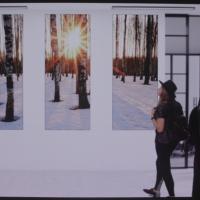 영상으로 감상하는 세계 최초 146인치 모듈러 TV, '더 월(The Wall)'