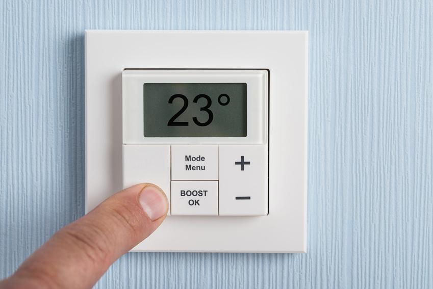 적정 온도와 습도를 항상 유지해주세요