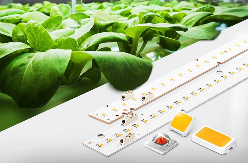 삼성전자가 출시한 '식물생장용 LED 패키지 및 모듈' 제품 이미지