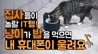 [뉴스CAFE] 서랍 속 잠자던 스마트폰의 이유 있는 변신?!