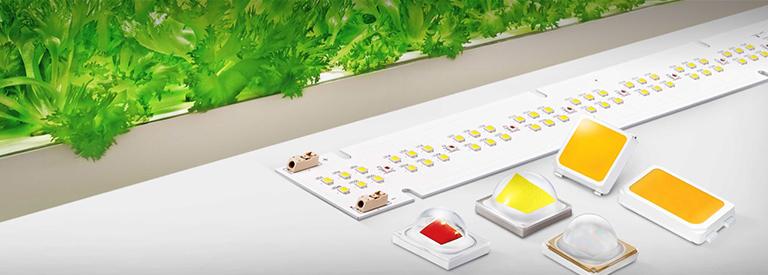 백색 빛 기반 식물 생장용 LED 신제품 출시