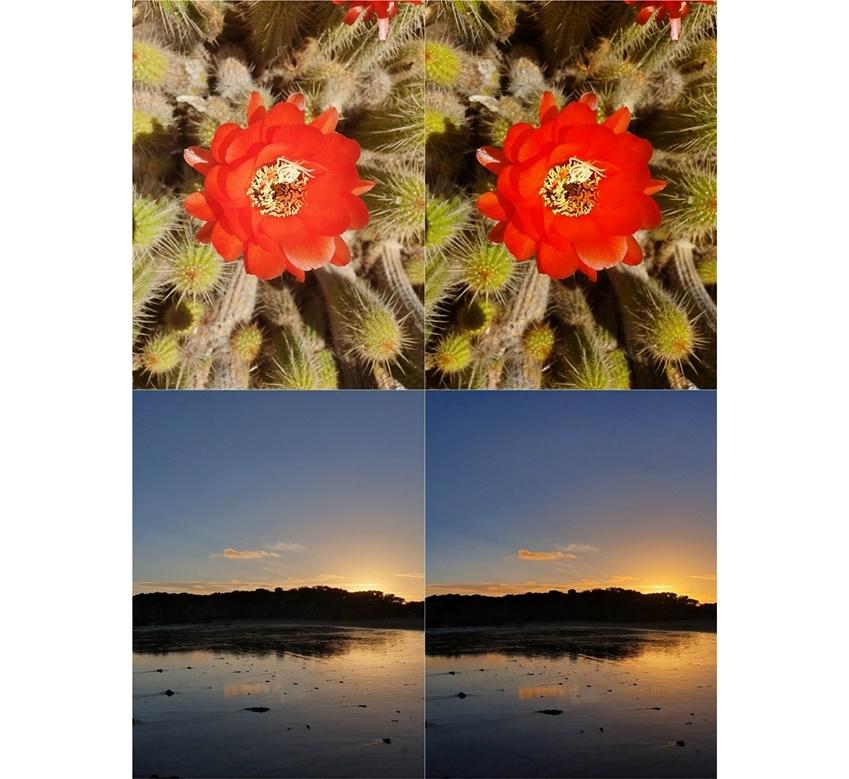 ▲ 장면별 최적 촬영 OFF(왼쪽) 장면별 최적 촬영 ON(오른쪽)