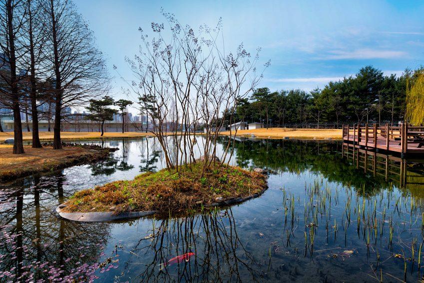 ▲ 최종 정화된 물로 조성한 사업장 안 연못