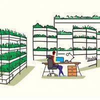 [건강한 먹거리, 기술과 만나다] ① 식물이 자라는 아파트가 있다?