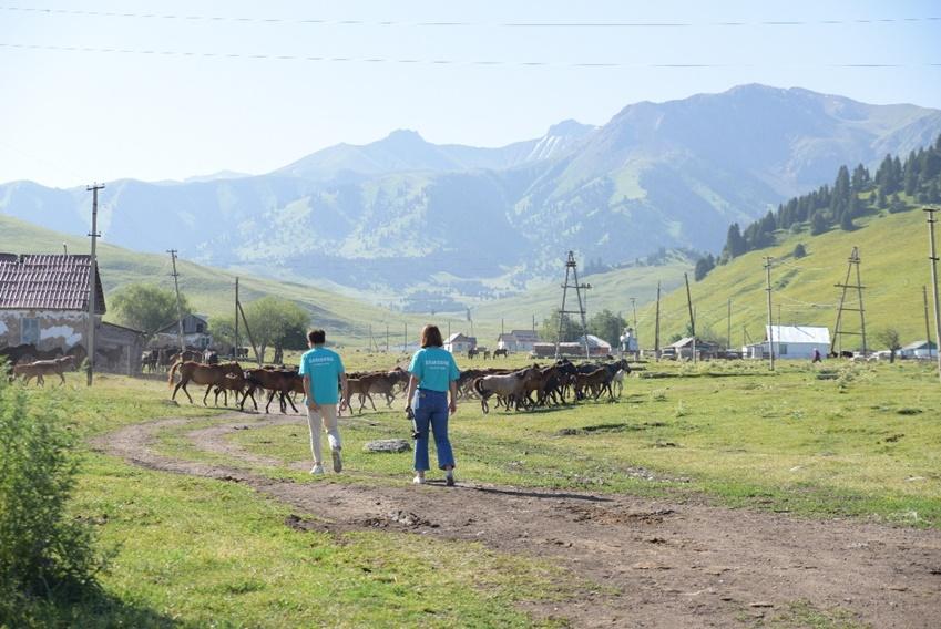 삼성 원위크 카자스흐스탄 봉사 모습
