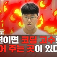 [뉴스CAFE] 문과생, 6개월만에 코딩 고수 되다?!