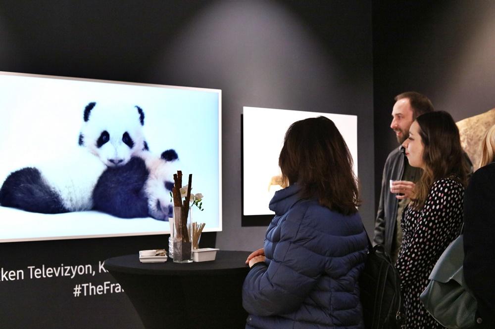 삼성전자 라이프스타일TV 내셔널지오그래픽 멸종위기동물사진전(2)