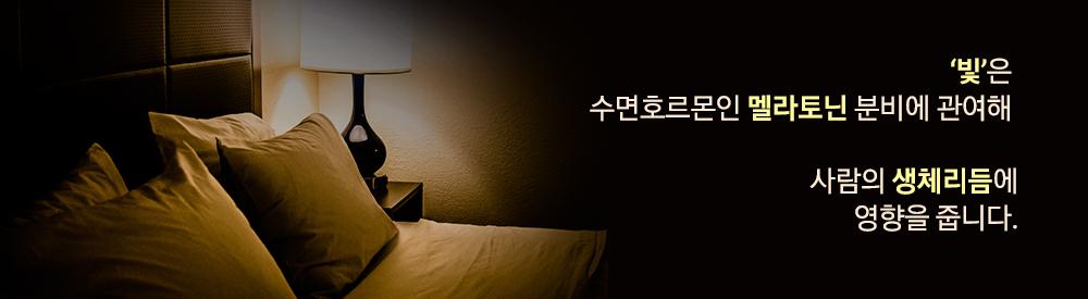 '빛'은 수면호르몬인 멜라토닌 분비에 관여해 사람의 생체리듬에 영향을 줍니다.