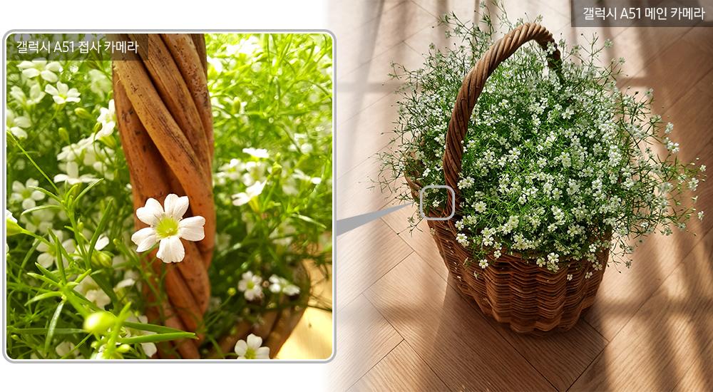 ▲ 함께여서 더 아름다운 꽃이라 불리는 '안개꽃'. 무리 지어 있는 모습도 아름답지만, 한 송이씩 따로 떼고 보면 앙증맞고 청순한 매력을 발견할 수 있다.