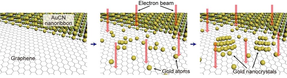 금 원자를 방출하는 물질이 결정핵을 형성한 후 금 나노결정으로 생성되는 과정을 보여주는 도식