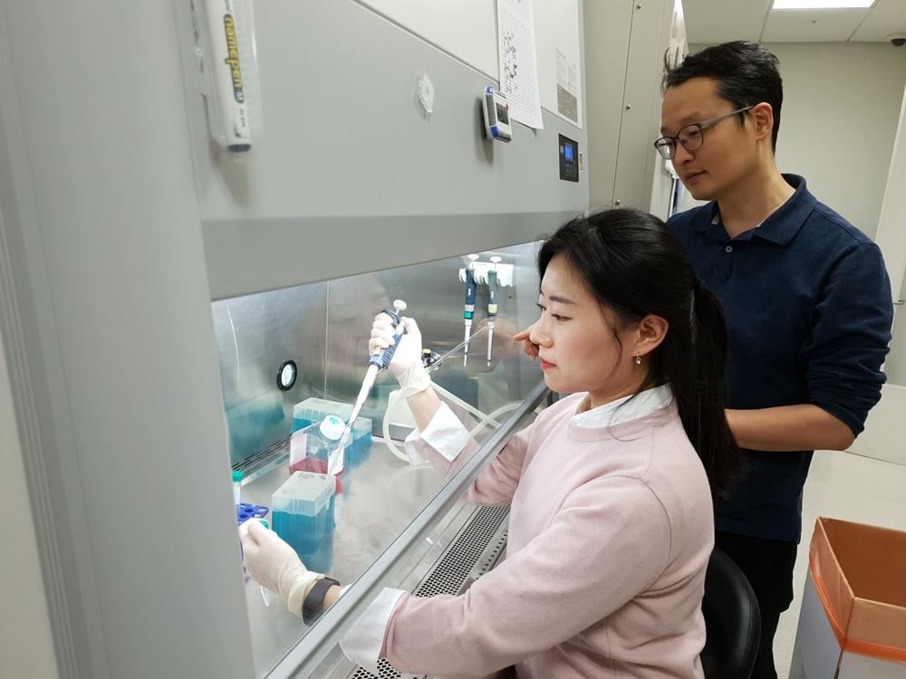 연세대학교 의과대학 김형범 교수(오른쪽)팀이 DNA 염기 서열 변화에 관한 실험을 하고 있다.