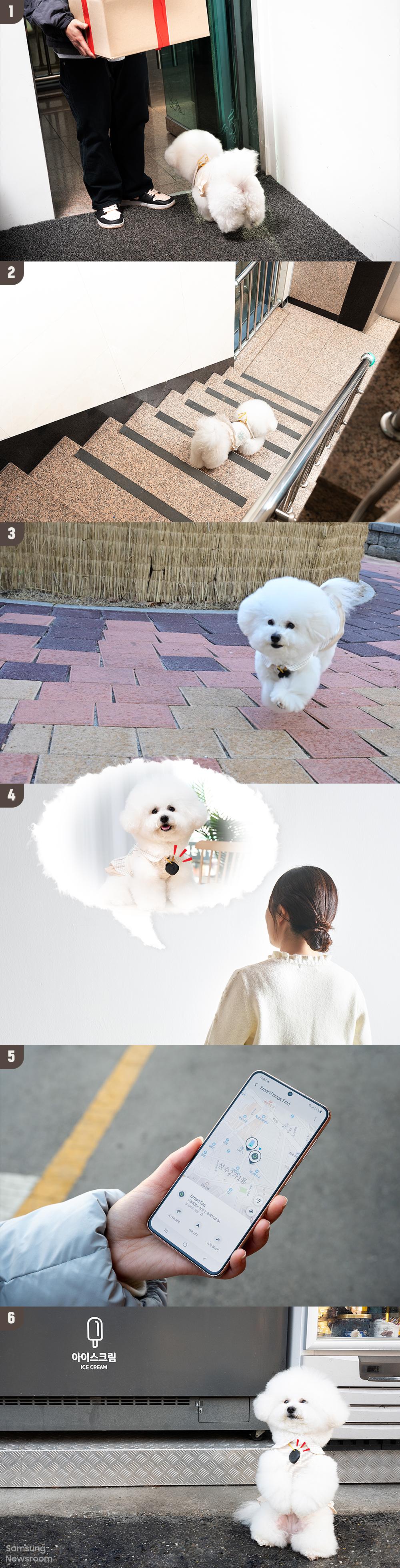 스마트태그를 이용해 강아지를 찾는 모습
