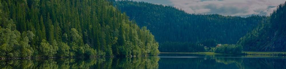 환경 보호의 중요성을 알려주는 자연 이미지